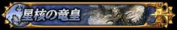 星核の竜皇